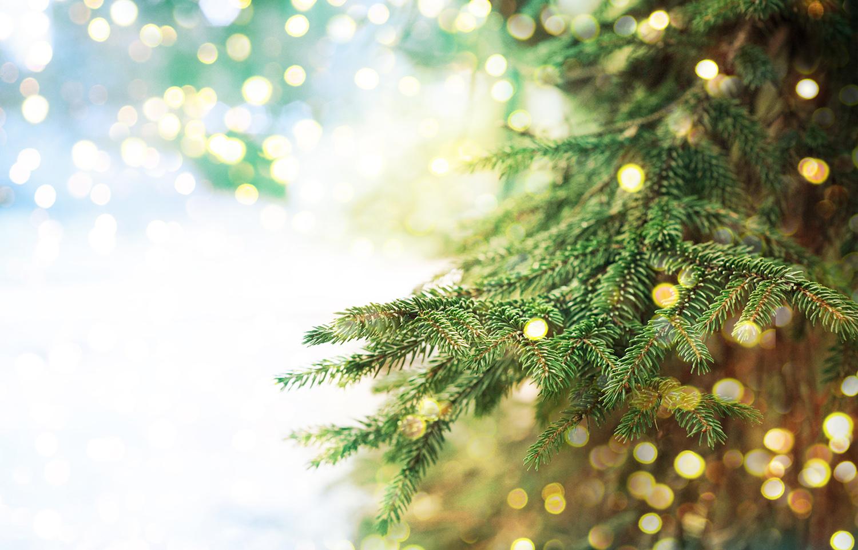 juletræ_web